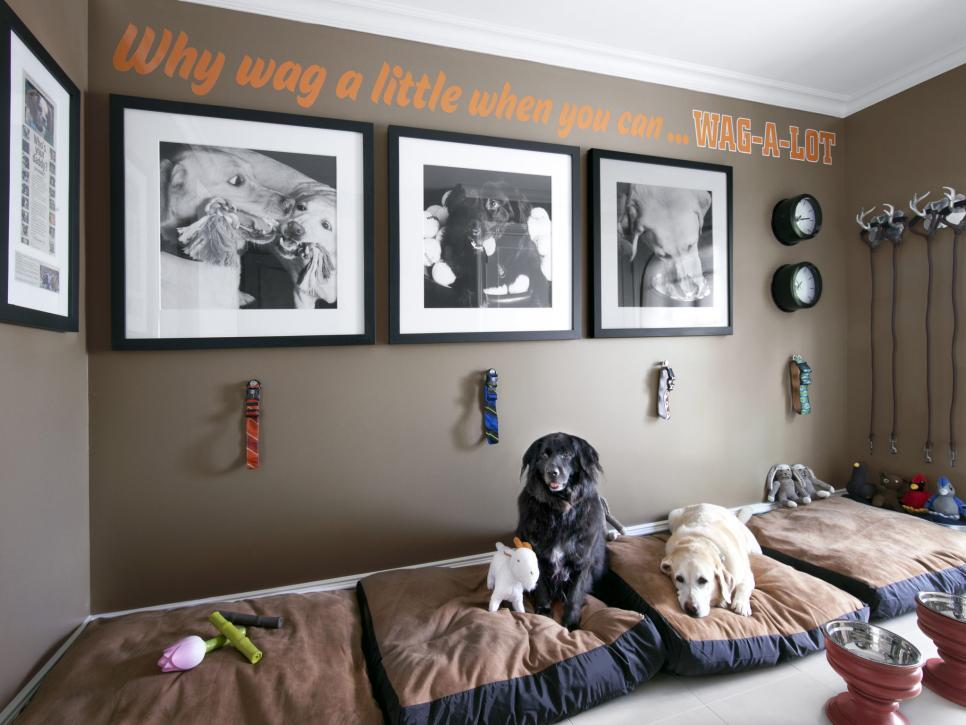 rx-hgmag001_verns-dogs-036-b-4x3-jpg-rend-hgtvcom-966-725